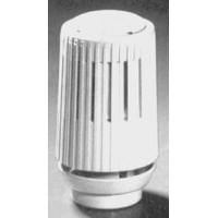Термостат R456 Giacomini
