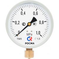 Манометр ТМ 100 мм, 0-1 МРа, М20х1,5 (снизу) кл. 1,5,  исп. М2